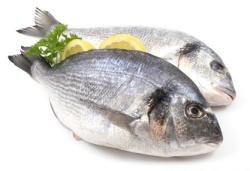 Sund fisk