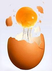 er æg sunde