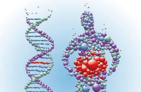 Gener og Vægttab
