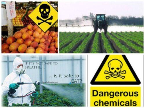 images_Billeder_Pesticid_alarm_Danskerne_udsaettes_for_pesticider_i_et_omfang_som_aldrig_set_tidligere