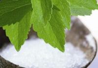 Stevia Sødemiddel