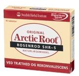 arctic root rosenrod