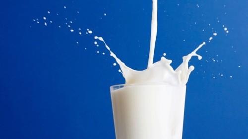 er mælk vigtigt for knoglerne?