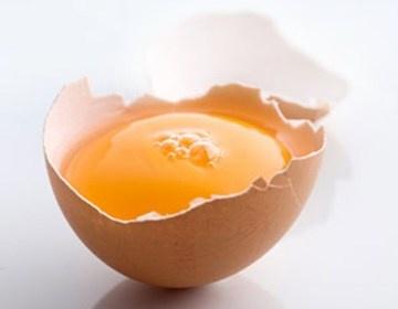 trick til deling af æg