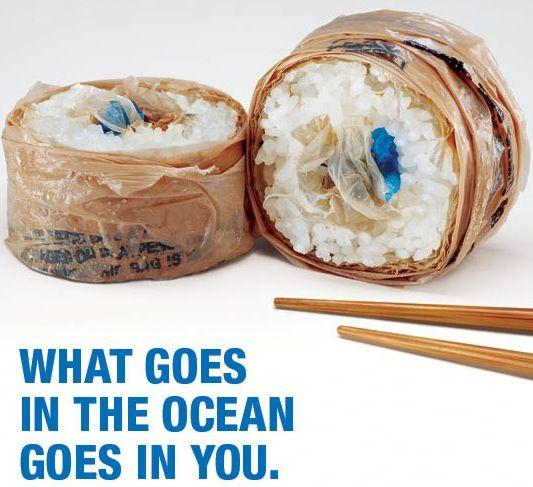 DTU rapport om plastikposer versus bomuldsnet