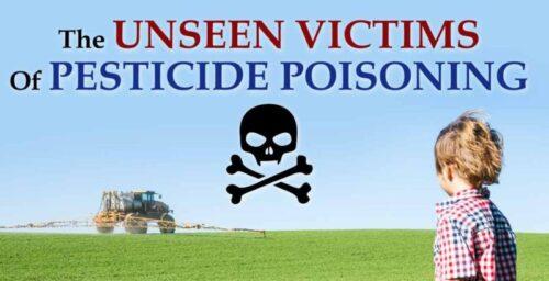 stop brugen af sundhedsskadelig kemi