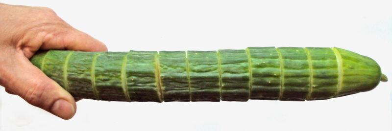 Er oekologiske agurker sundere?