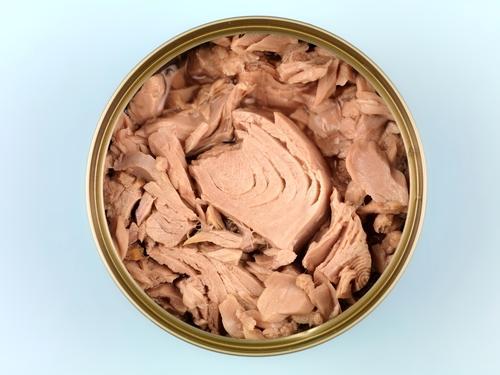 Methyl kviksølv fra tun er sundhedsskadeligt