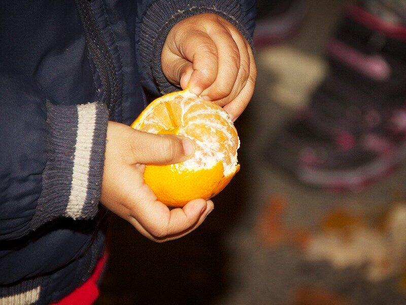 Forbudt sproejtemiddel fundet i frugt og groent