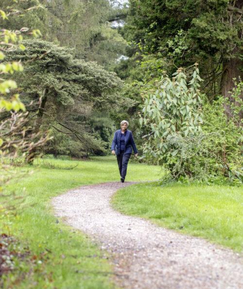 Ny forskning; naturen kan helbrede dig