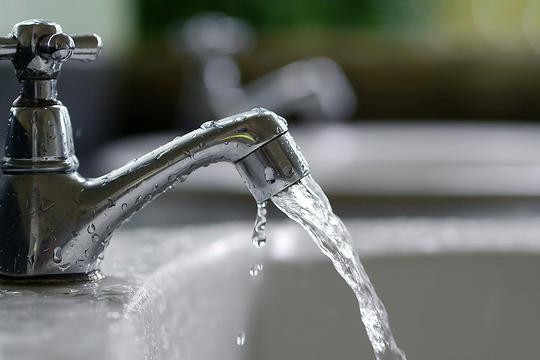 Grundvandet er forurenet med svampemidler